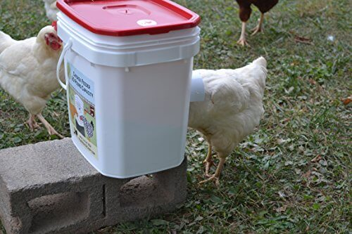 p rite feeder chicken extra large pound farm htm products