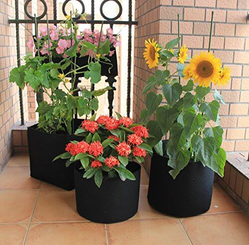 Grow Bags Fabric Planter 5 Pack Insteading