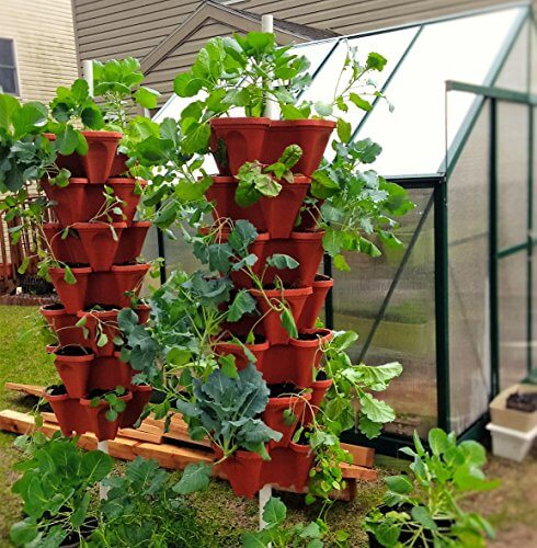 Strawberry In Container Growing: Mr. Stacky 5-Tier Strawberry Planter Pots • Insteading