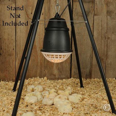 Premier Quot Prima Quot Heat Lamp For Poultry Lambs And Pets