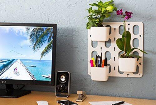 vertibloom living wall garden starter kit insteading. Black Bedroom Furniture Sets. Home Design Ideas