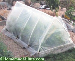 Greenhouse Plans • Insteading on simple home greenhouse, simple diy greenhouse, simple small horse, simple small storage, simple small trap, simple small pergola, simple greenhouse kits, simple small library, simple small cabin, simple greenhouse heater, simple small animals, simple small sunroom, simple small fireplace, lean to greenhouse, simple small pool, simple small porch, simple greenhouse plans, simple greenhouse ideas, simple small home, simple small chicken house,