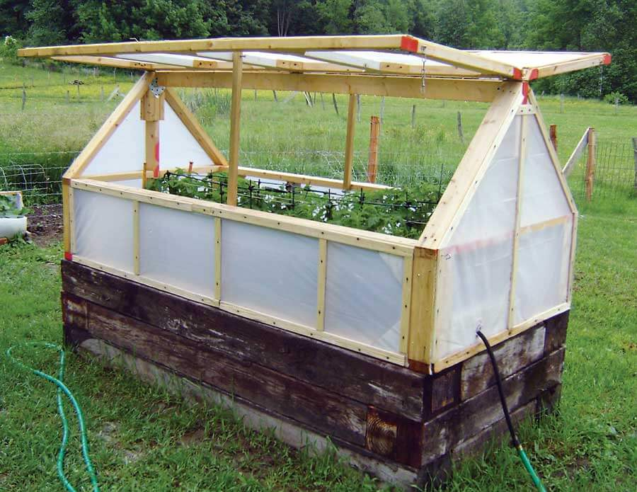 Greenhouse Plans • Insteading on small aquaponics greenhouse, small garden greenhouse, small heated greenhouse, build small greenhouse, small greenhouse construction, small greenhouse heating, diy small greenhouse, small hydroponic greenhouse, small greenhouse kits, small space greenhouse, homestead greenhouse, small metal greenhouse, small commercial greenhouse, small wood greenhouse, small home greenhouse, small hobby greenhouse, small greenhouse design, small sunroom greenhouse, straw bale greenhouse, small greenhouse foundation,