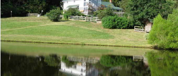 bluebird hill farm