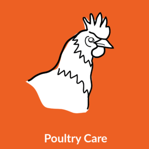 Poultry Care