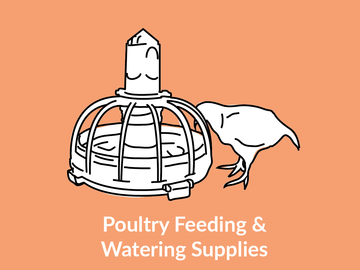 Poultry Feeding & Watering Supplies