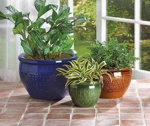 Earthenware Planter