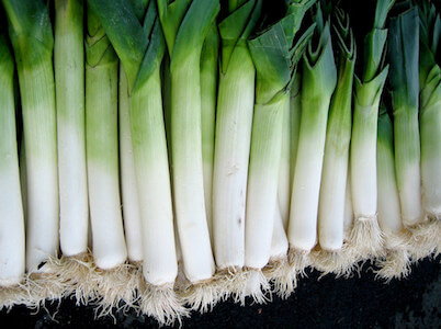 lots of leeks in a row
