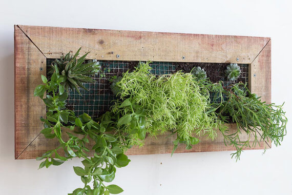 Wooden Wall Planter Box
