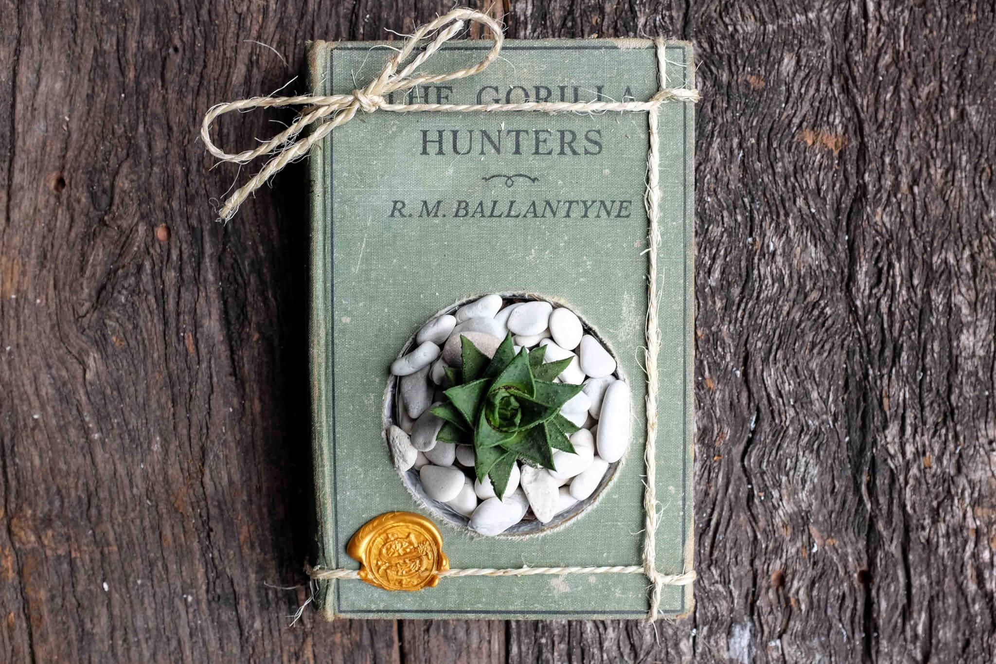 a vintage book succulent planter