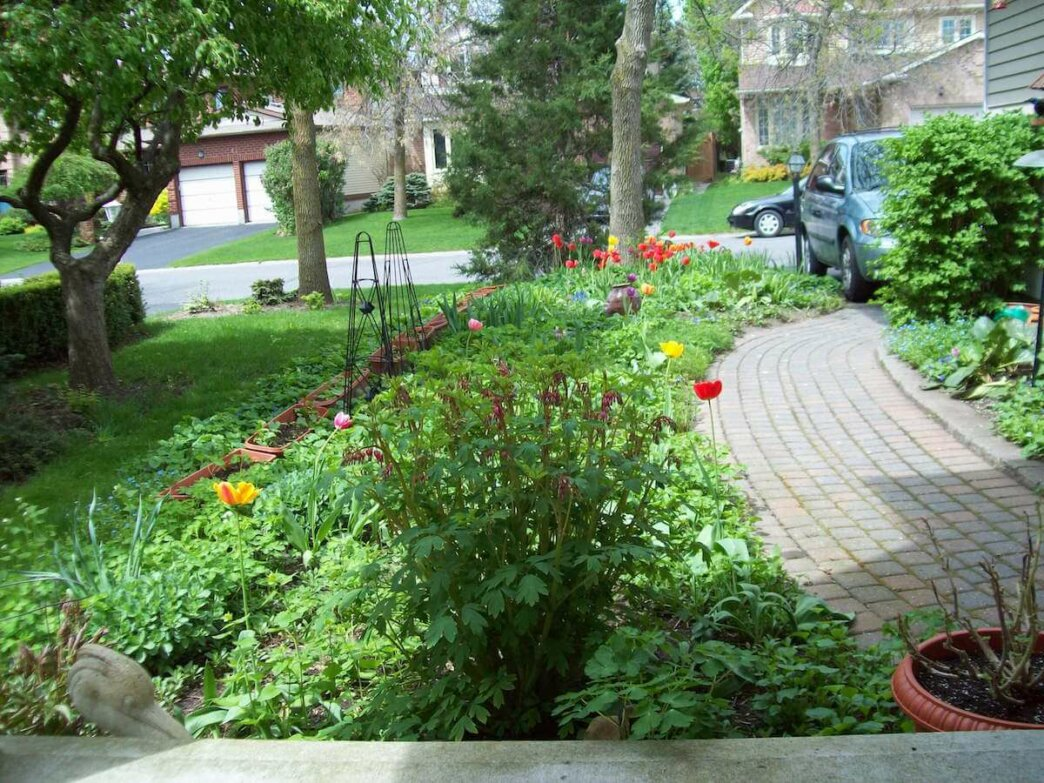 the completed garden full of spring flowers