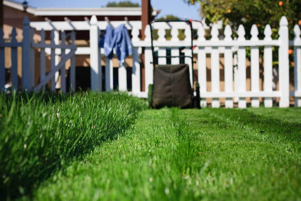 mowed grass to keep mosquitoes away