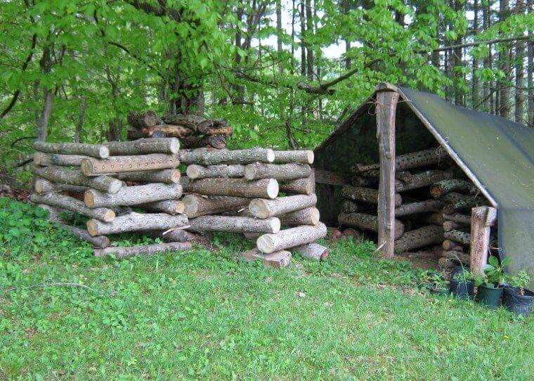 mushroom log production setup