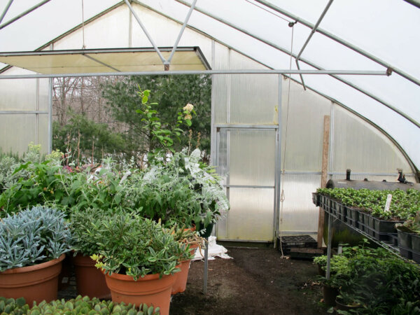 The panels of the greenhouse are unclear, and there is a large panel open in the back.