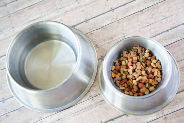 A picture of a silver water and pet food dish.