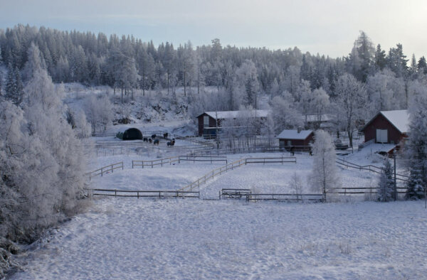 a farm covered in snow with trees in the distance