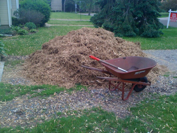 pile of wood chip mulch in yard with wheel barrow