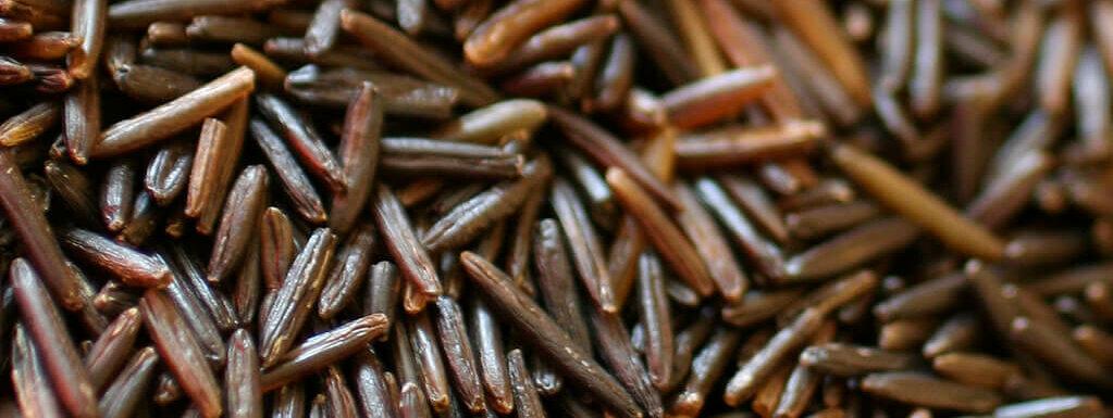 dark brown uncooked wild rice