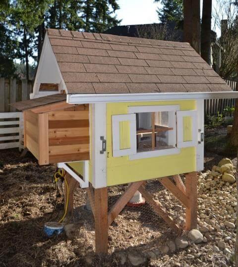 affordable 50 dollar chicken coop plan