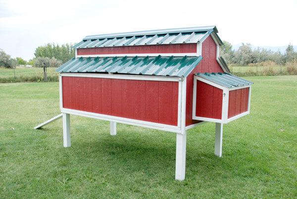 Basic Chicken Coop Plans