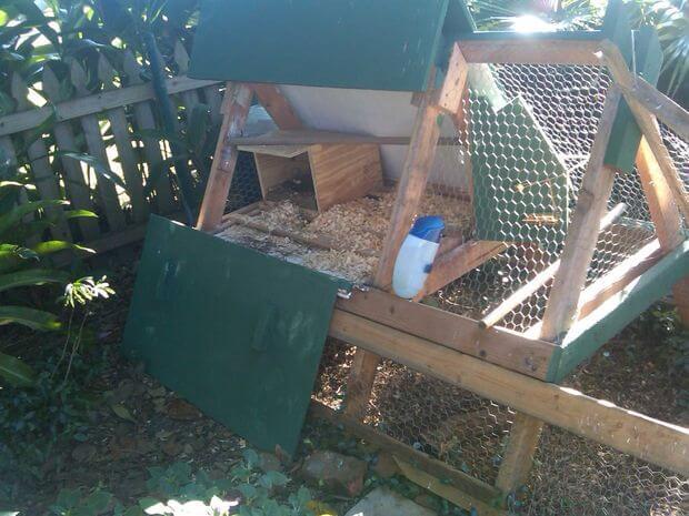 Cheap A Frame Chicken Coop Plans