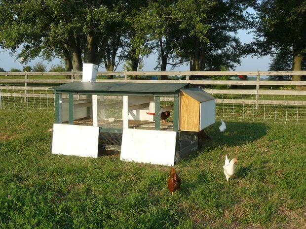 Chicken Tractor With Bottom Run