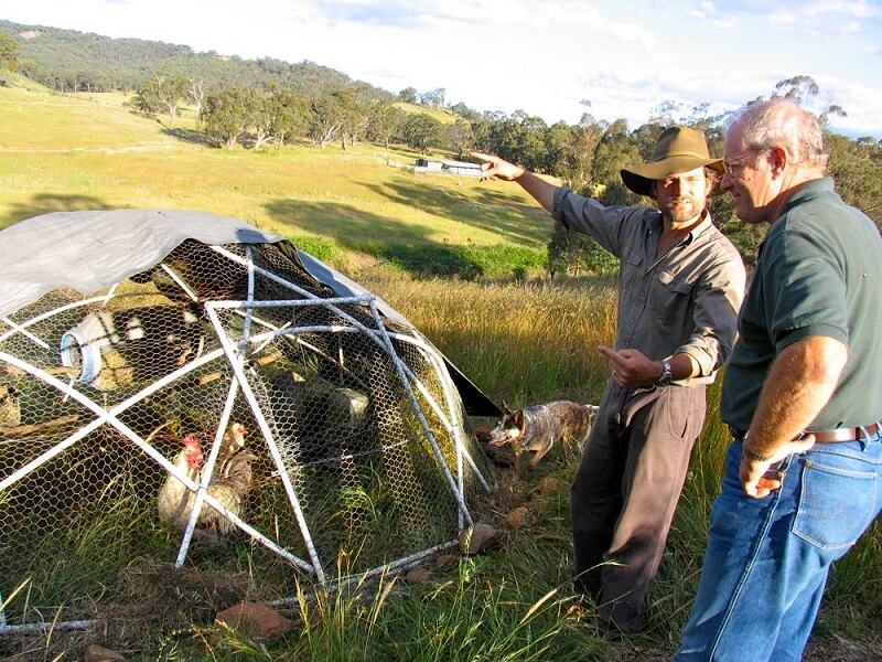 Geodesic Chicken Tractor Plans