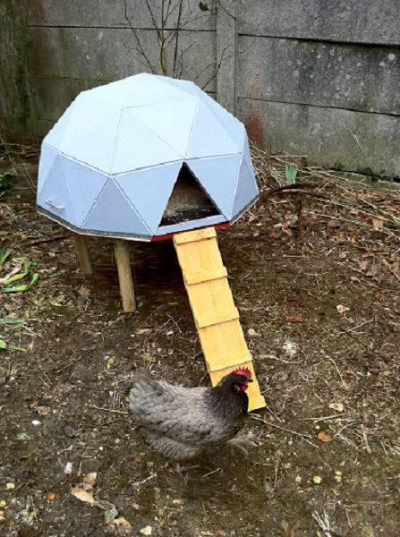 Geodesic Dome Chicken Coop Plans