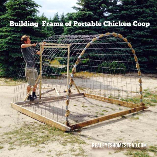 Hoop Style Chicken Tractor Plans