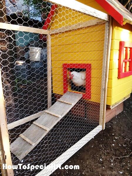 Insulated Chicken Coop Plans
