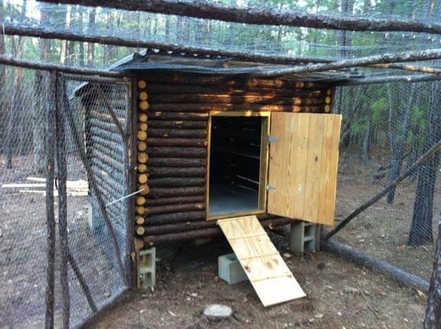 Log Cabin Chicken Coop Plans