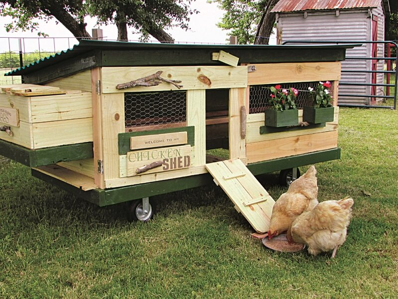 Shed Style Chicken Tractor Plans