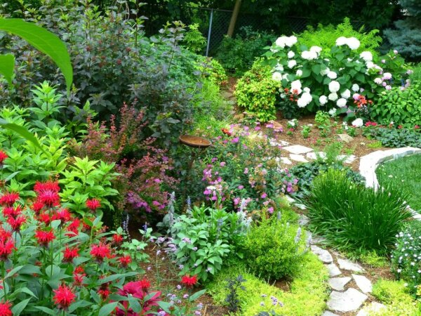 garden with stone pathway