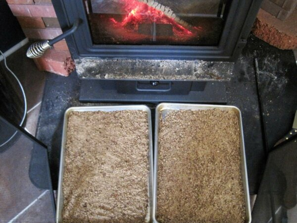 ground acrons drying on cookie sheet by wood stove