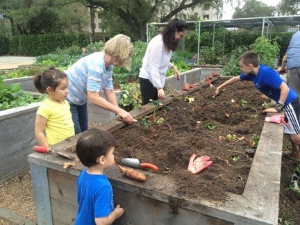 students and volunteers planting in raised garden bed