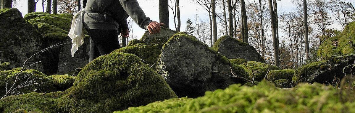 man walking through woods