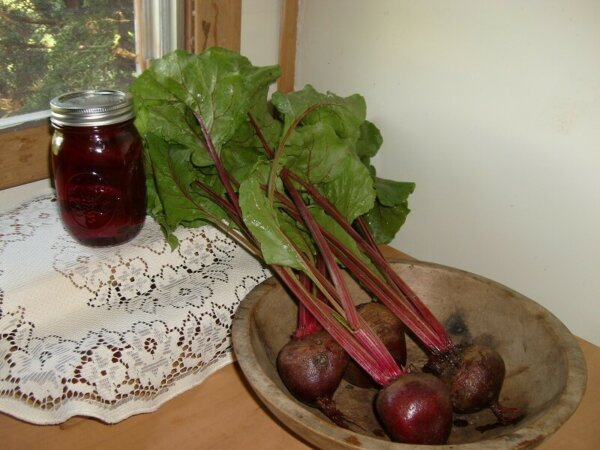 beets on plate and pickled beets
