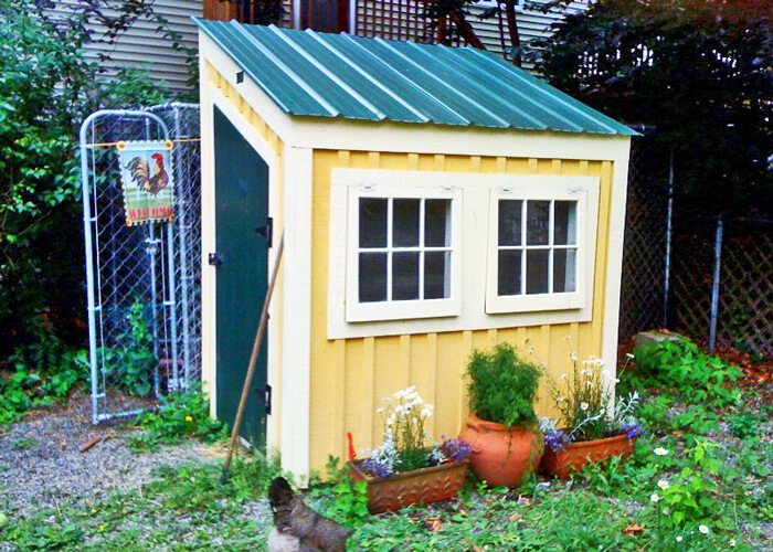 small 4' x 6' chicken coop