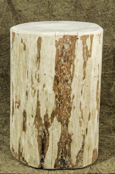pine tree stump table