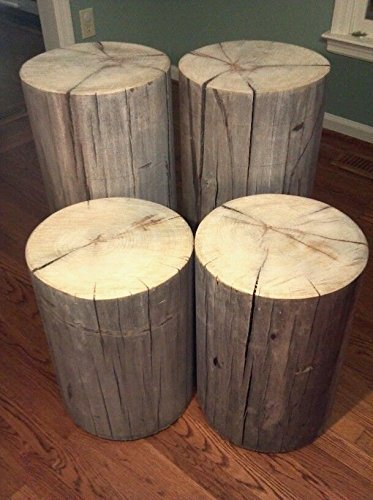 Gray Poplar Tree Stump Table