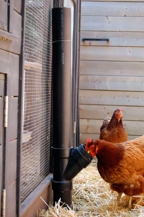 No-Spill Chicken Feeder