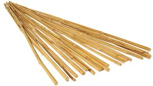 bamboo tomato stakes