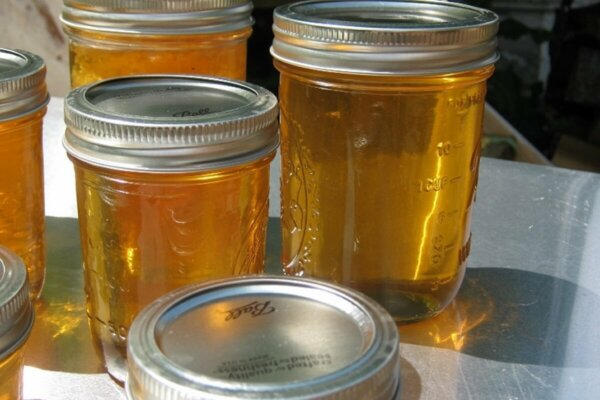 strained and canned honey