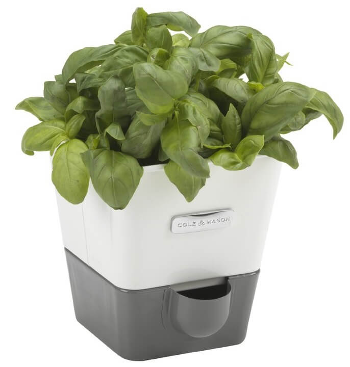 Self-Watering Indoor Herb Planter