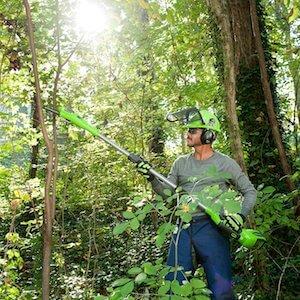 greenworks pole saw