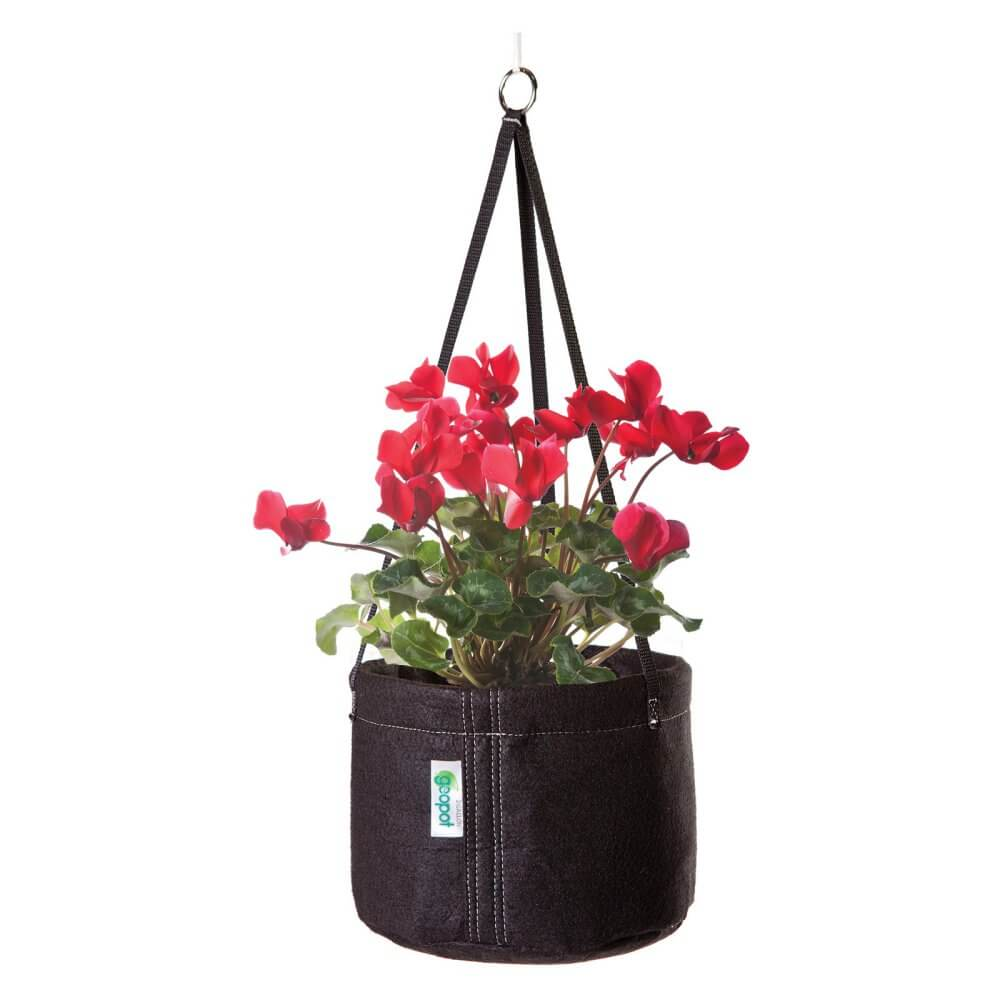 Geopot Hanging Planter