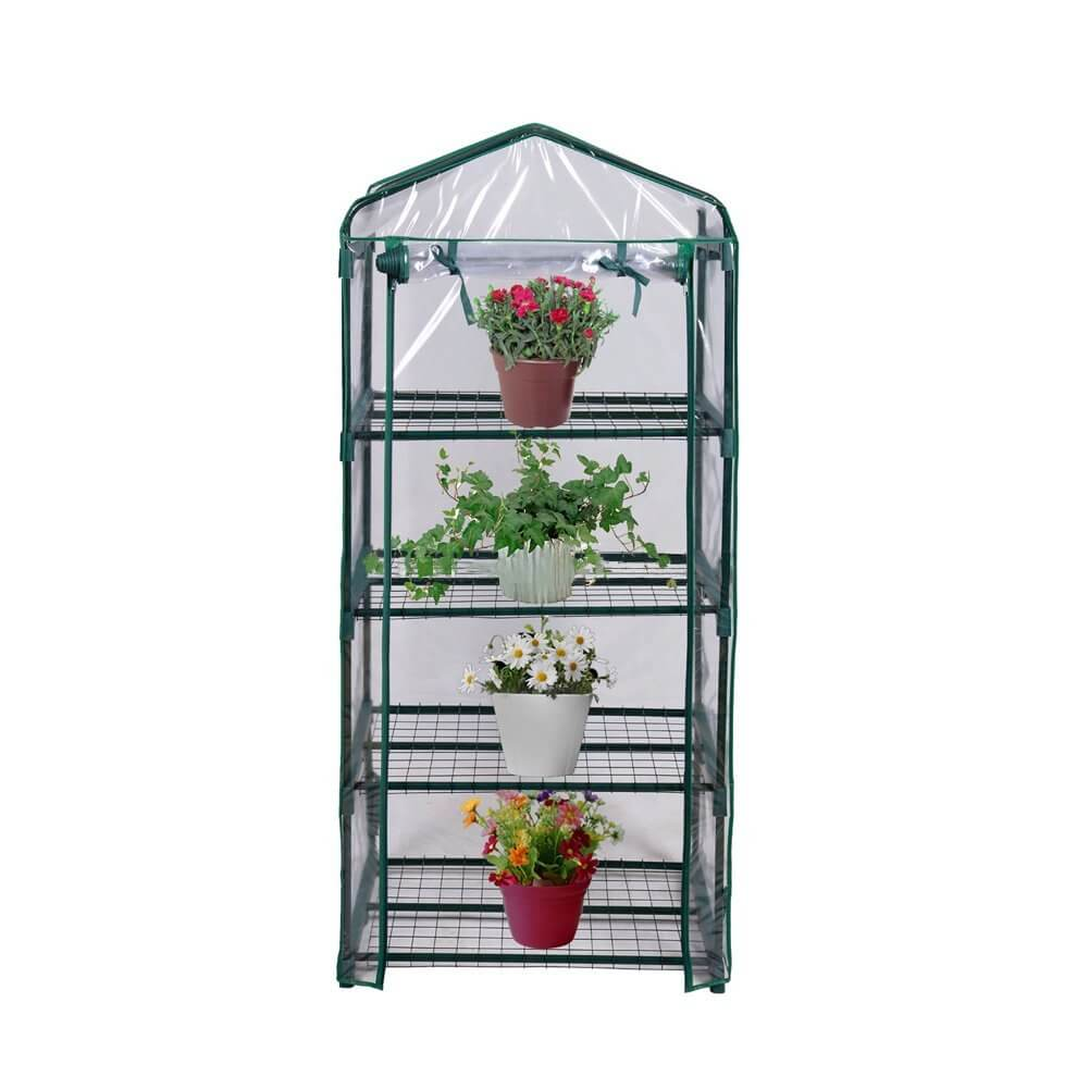 Small Greenhouse with Shelves