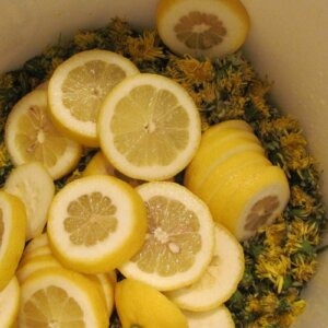 dandelion and lemon wine