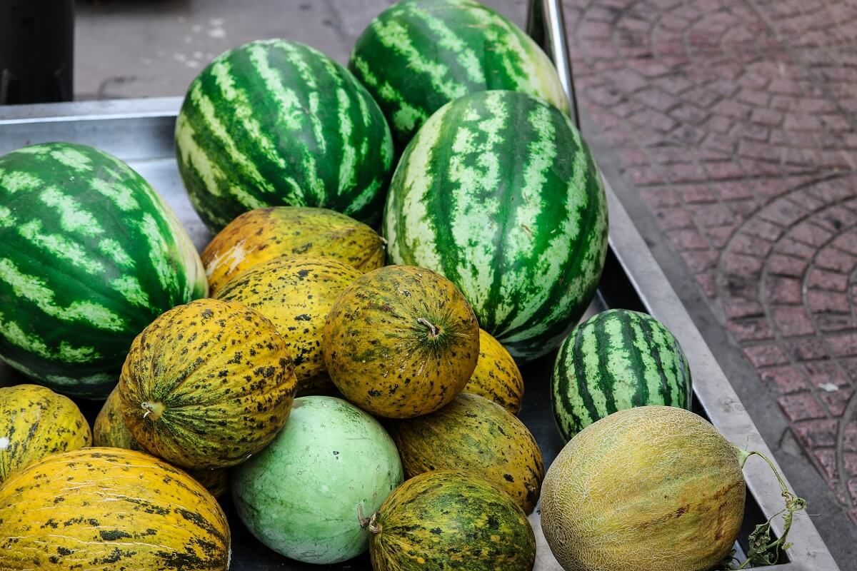 low sugar melons