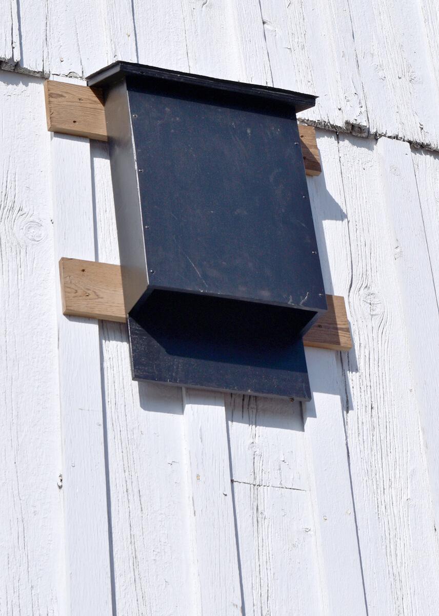 Mailbox Bat House Plans